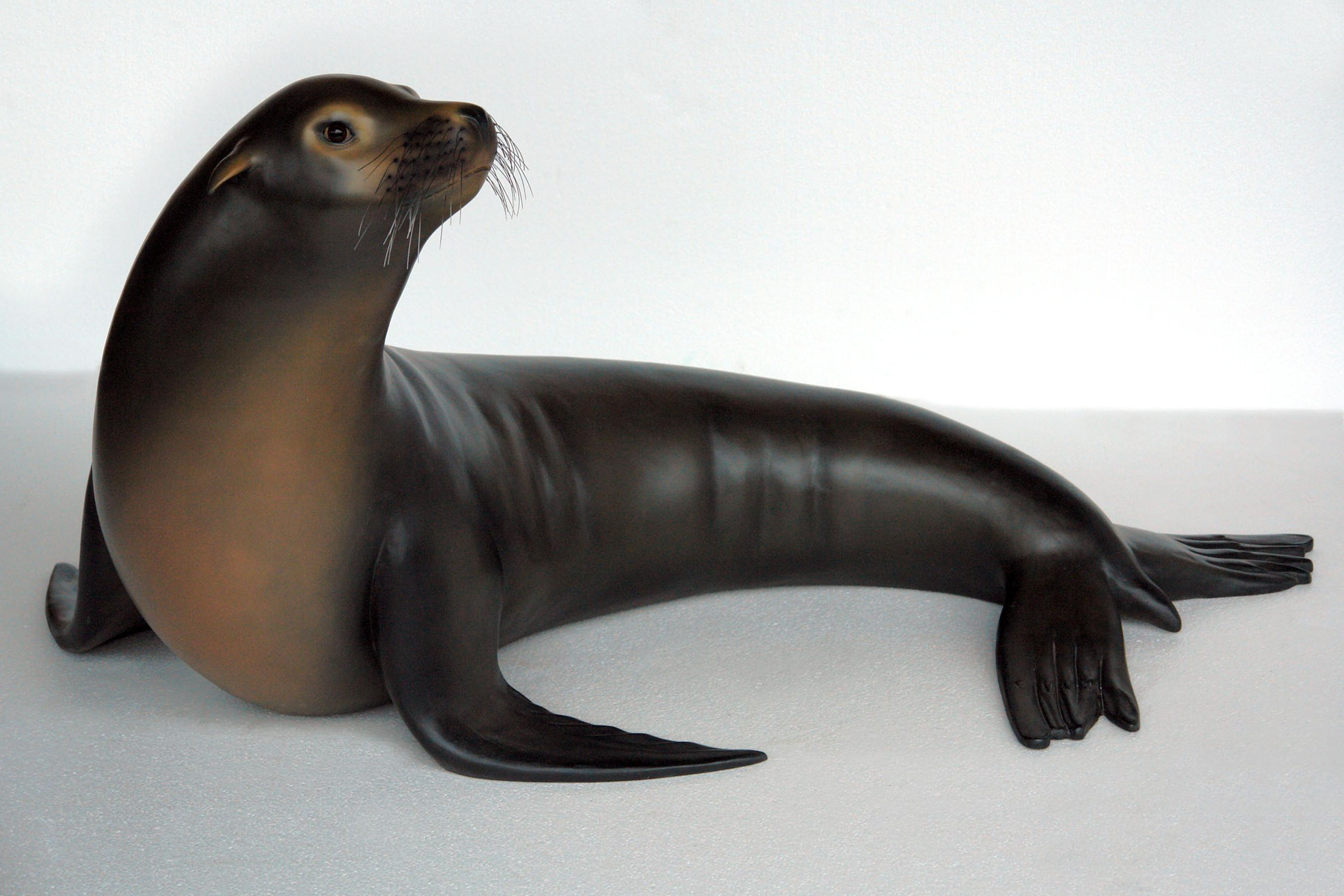 5' (wide) Sea Lion