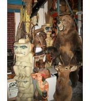 Grizzly Life Size Taxidermy